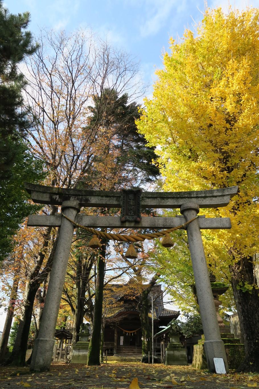 冬の到来を醸す国造神社参道
