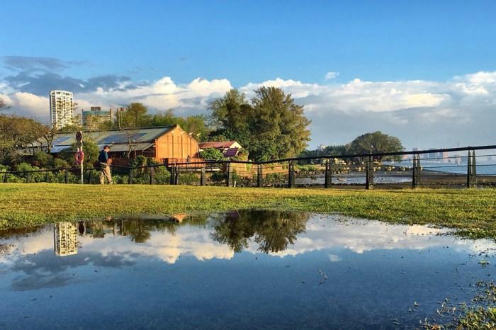 週末好去處 | 淡水楓樹湖-古道裡的山林花海