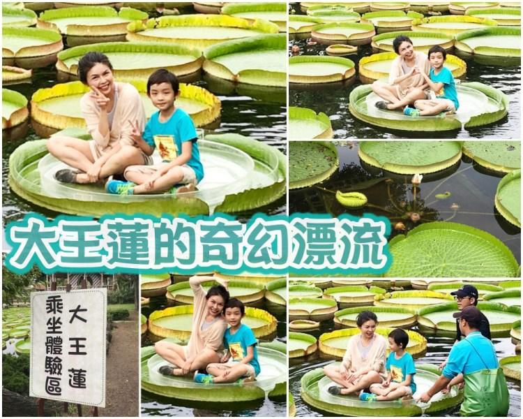 藏身雙溪公園的 大王蓮奇幻漂流 |  同場加映 新兒童樂園嗨翻天