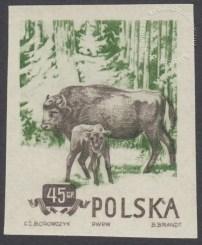 Zwierzęta chronione - 743A