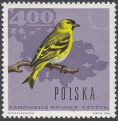 Ptaki leśne - 1576
