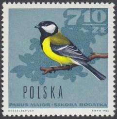 Ptaki leśne - 1578