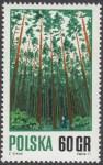 Gospodarka leśna - 1921