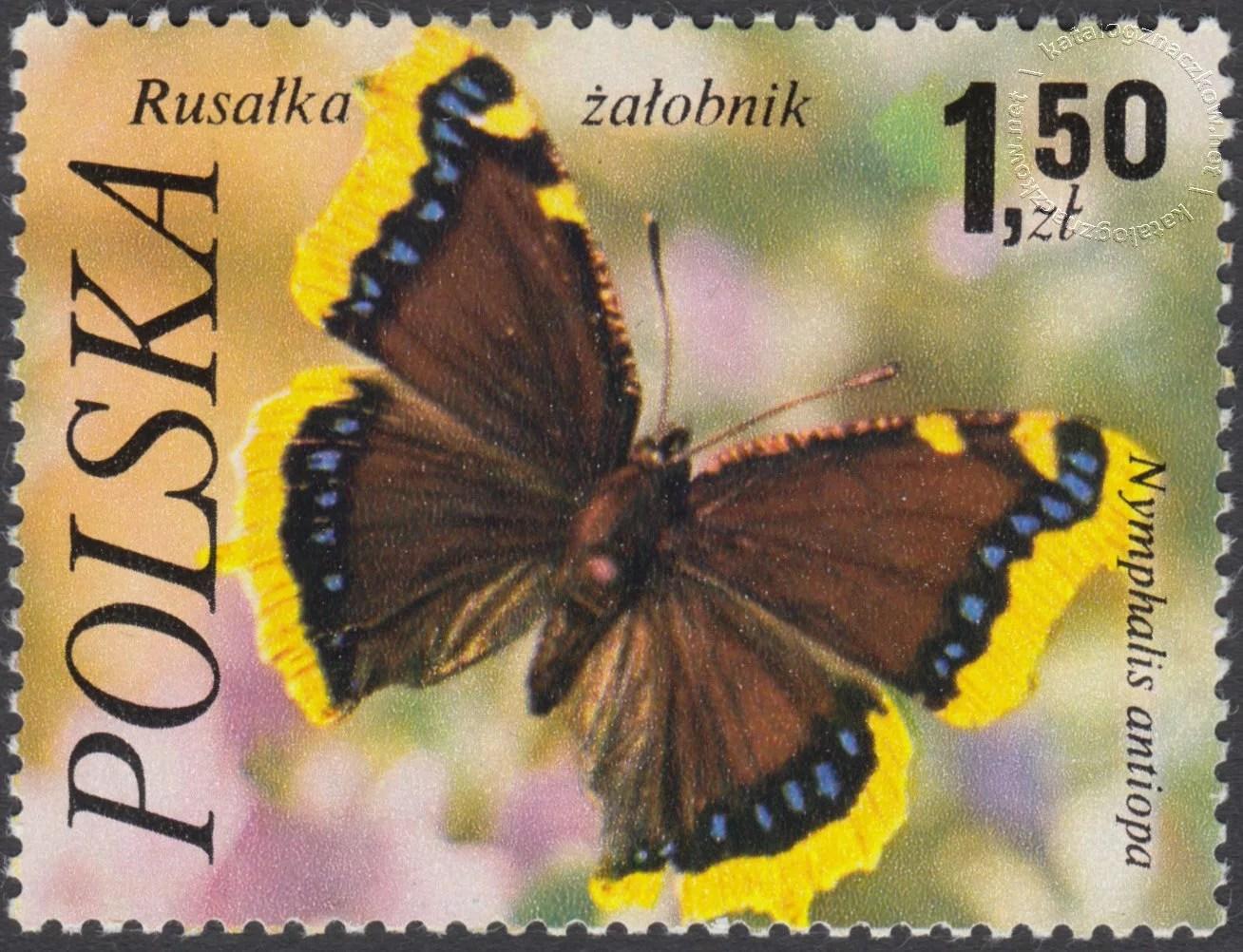 Motyle znaczek nr 2371