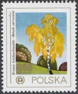 Ochrona środowiska - drzewa - 2427
