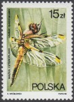Ważki polskie - 2987