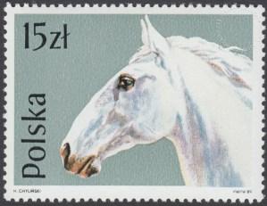 Konie - 3042