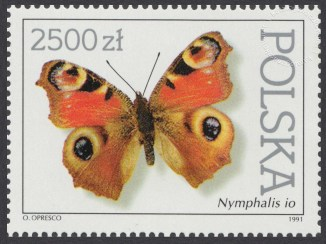 Motyle z kolekcji Instytutu Zoologii PAN w Warszawie - 3200