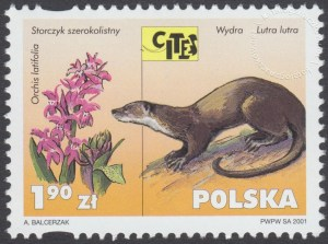 Dzikie zwierzęta i rośliny - gatunki zagrożone wyginięciem - 3751