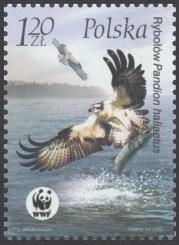 Ptaki - 3932