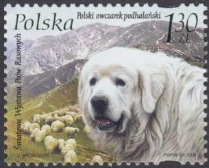 Światowa Wystawa Psów Rasowych 2006 w Poznaniu - 4130