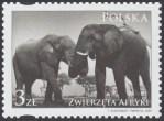 Zwierzęta Afryki - 4274
