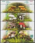 Grzyby w polskich lasach - ark. 4545-4558