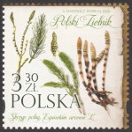 Polski Zielnik - 5086