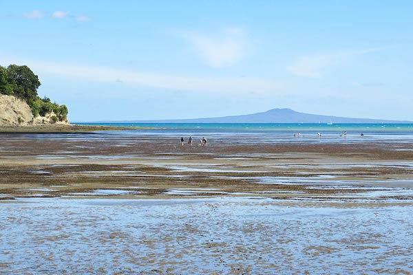 Okoromai Bay in Hibiscus Coast