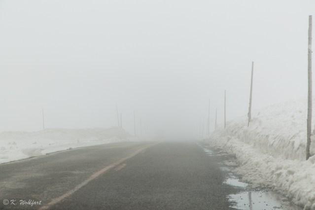 roadtrip bergen norway-24