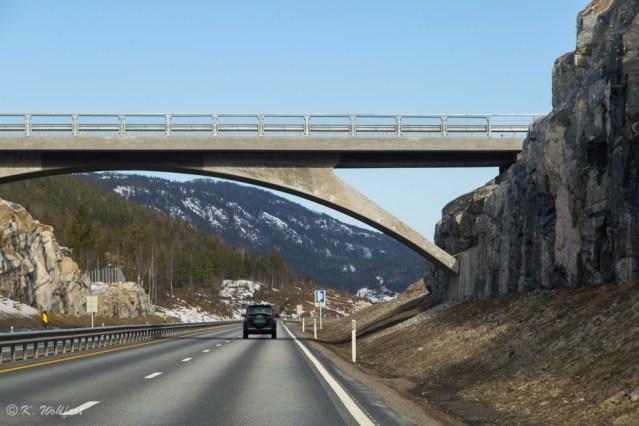 roadtrip bergen norway-4
