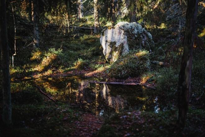 tivedens_nationalpark-4