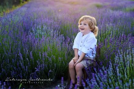 fotografia dziecięca kraków lawenda