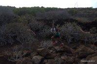 Haria Extreme pasos recorrido (164)