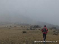 Desafio Robledillo 14 (5)