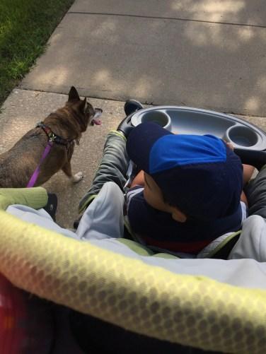 Walks with my favorite buddies