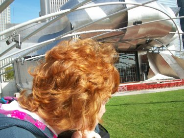 At Millennium Park- Cloud Gate- the Bean
