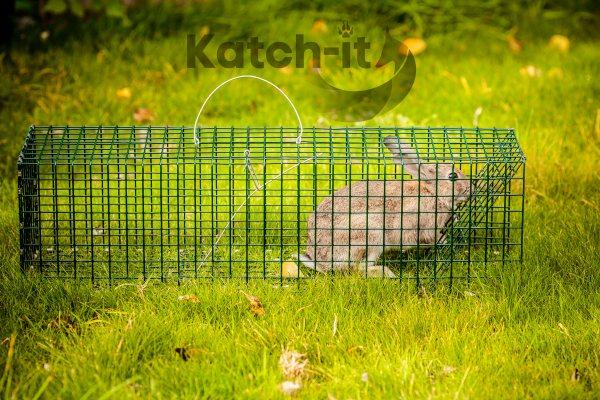 Rabbit Trap live catch