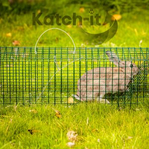 Rabbit Trap live catch