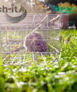Katch-it Multi catch Rat Trap