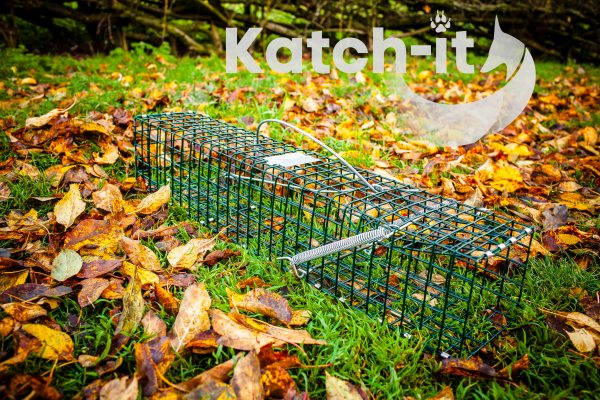 Mink Trap Katch-it
