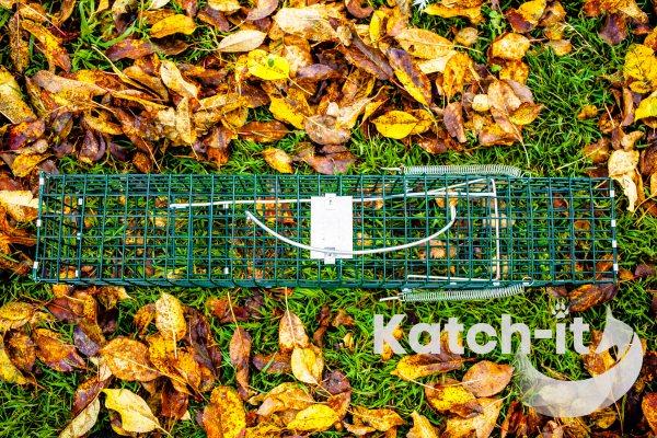 Mink Trap Katch-it