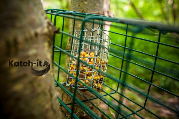 Picture of Multi-catch Compact Squirrel Trap by Katch-it