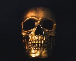 pirate skull piracy