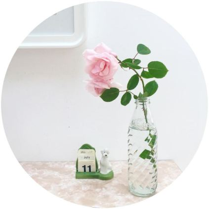Roses in vintage soda stream bottle on kate Beavis Vintage Home blog