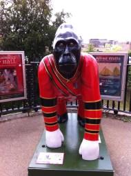 Go Go Gorilla Yo'man, Norwich