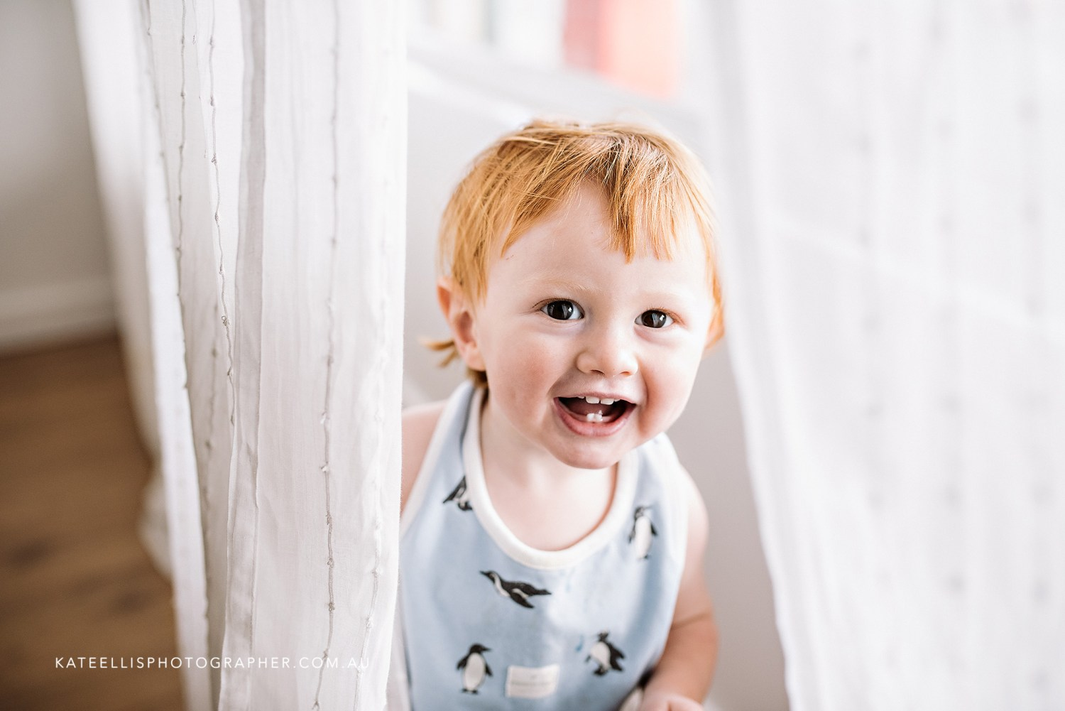Charlie | Adelaide Baby Photographer