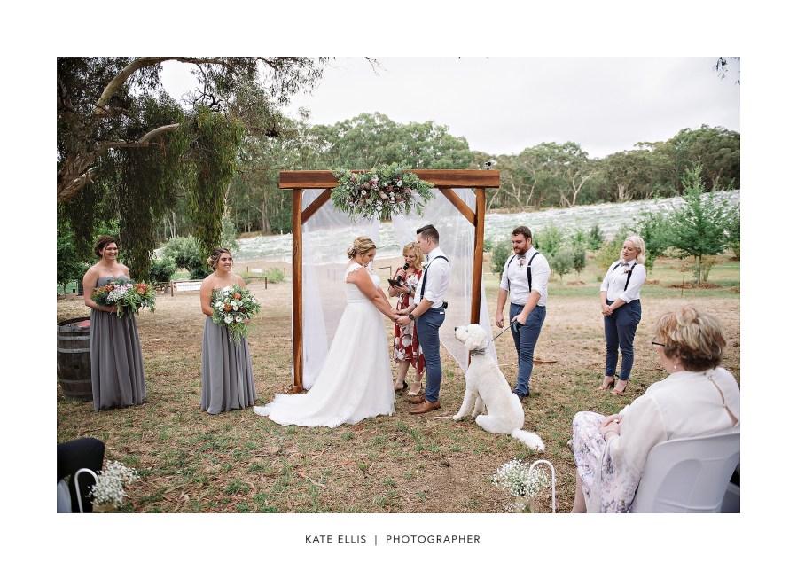 Sarah + Kevin + Oakley | Adelaide Wedding Photographer