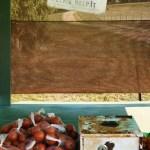 fresh tomatoes, Flinders, Mornington Peninsula, stall, Victoria, kate mccombie, photographer, melbourne