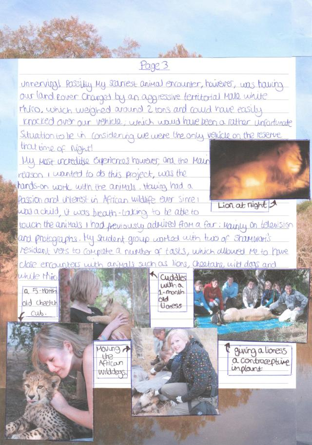 Shamwari Report page 3