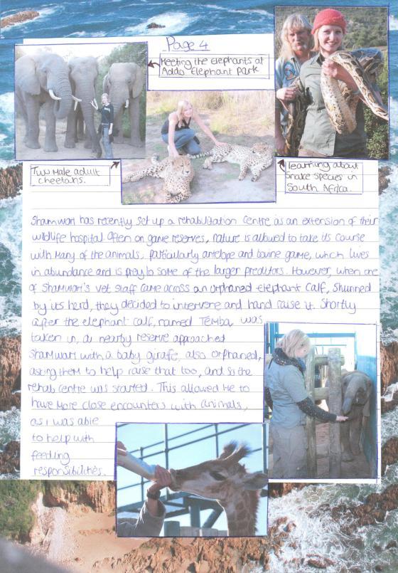 Shamwari Report page 4