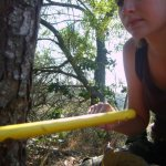 Kate on Conservation tree cutting