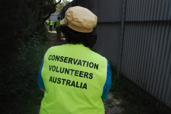 Litter collector, Australia