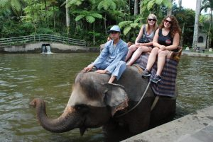 Kate on Conservation with Elephant