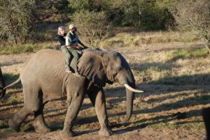 Kate on Conservation with Elephants on Shamwari Game Reserve