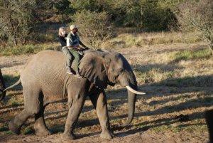 Kate on Conservation with Elephants on Shamwari Game Reserve