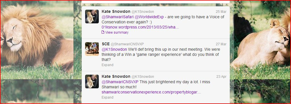 shamwari voice of conservation tweets