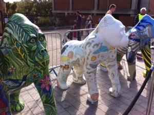 Go Go Gorilla's World Animals, Boris and Jungle Jenny - Norwich