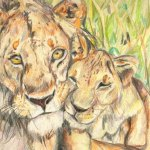 Lion art by Kate on Conservation