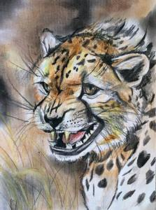 Cheetah Art by Kate Snowdon